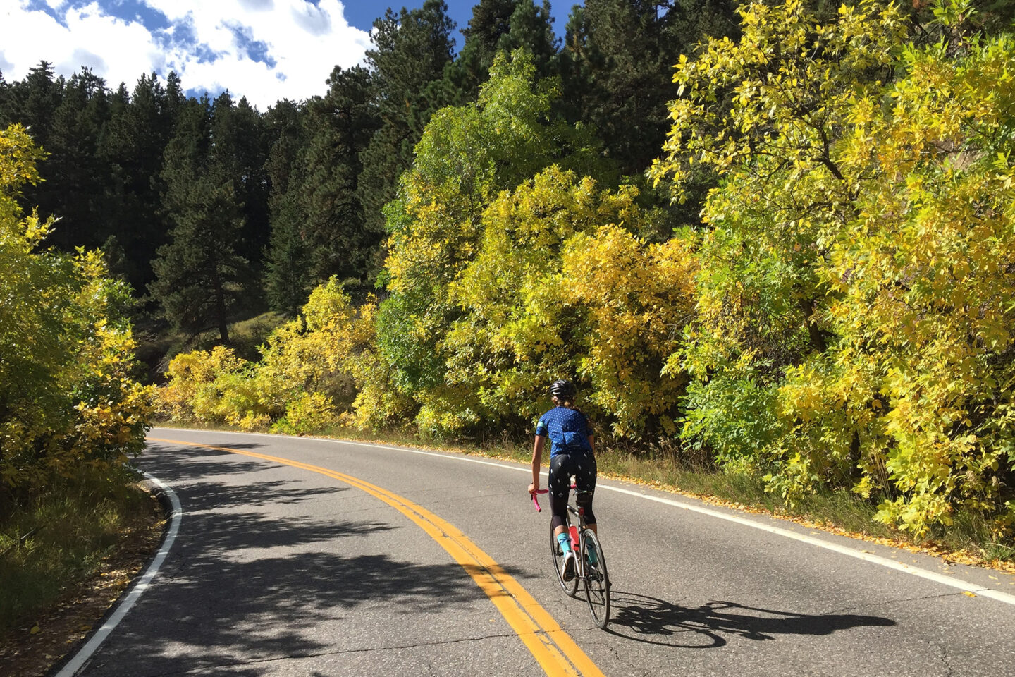 cyclist Flagstaff mountain autumn foliage