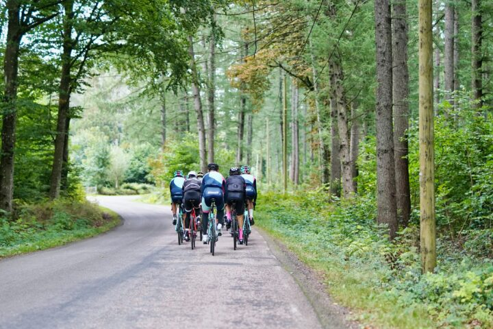 group of cyclists rides through forest