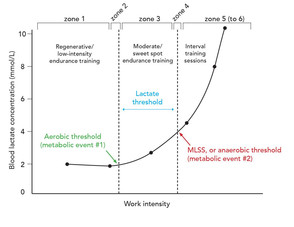 lactate-workload plot of thresholds