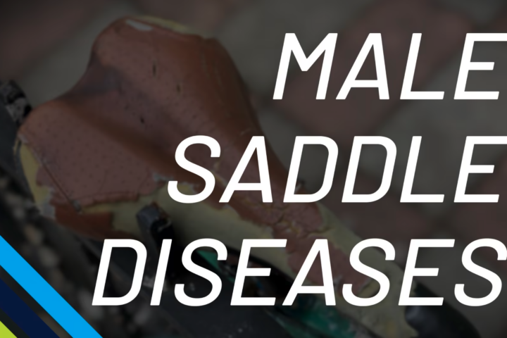Male Saddle Diseases Andy Pruitt